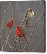Three Cardinals Canvas Print