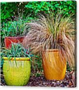 Three Colorful Pots Canvas Print