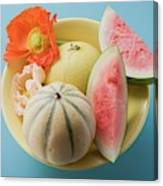 Three Different Melons In Bowl (overhead View) Canvas Print