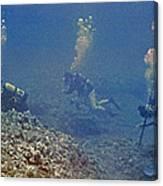 Three Divers In Hawaii Canvas Print