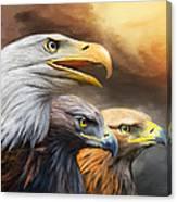 Three Eagles Canvas Print