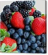 Three Fruit 2 - Strawberries - Blueberries - Blackberries Canvas Print