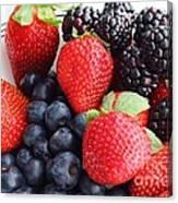Three Fruit - Strawberries - Blueberries - Blackberries Canvas Print