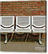 Three Is A Crowd Canvas Print