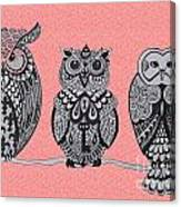Three Owls On A Branch Pink Canvas Print