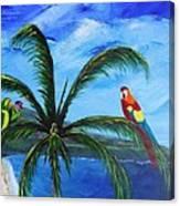 Three Parrots Canvas Print