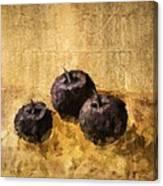 Three Plums Still Life Canvas Print