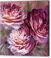 Three Roses Burgundy Greeting Card Canvas Print