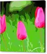 Three Tulips - Painting Like Canvas Print