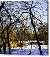 Through The Branches 3 - Central Park - Nyc Canvas Print