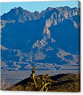 Through The Desert Canvas Print