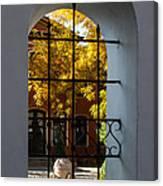 Through The Fence Window Canvas Print