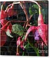 Through The Glass . Texture Canvas Print