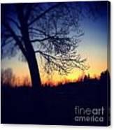Through The Tree Canvas Print