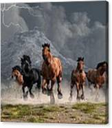 Thunder On The Plains Canvas Print