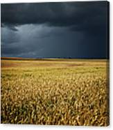 Thunderstorm Clouds Over Wheat Field Canvas Print