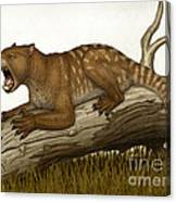 Thylacoleo Carnifex, A Marsupial Canvas Print