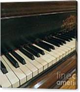 Tickle The Ivories Canvas Print