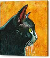 Black Cat In Profile Canvas Print