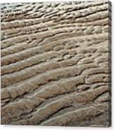 Tidal Footprint Canvas Print