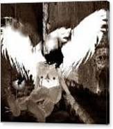 Tied Angel Canvas Print