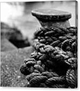 Tied Up Canvas Print