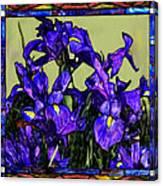 Tiffany Style Blue Iris Canvas Print