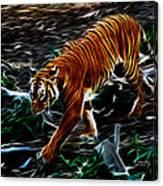 Tiger 4217 - F Canvas Print