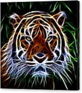 Tiger Abstact Art Canvas Print