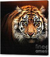 Tiger Bright Canvas Print