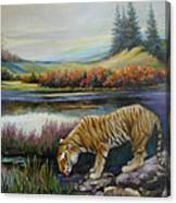 Tiger By The River Canvas Print