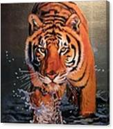 Tiger Crossing Water Canvas Print