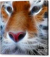 Tiger Face Fractal Canvas Print