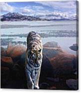 Tiger In A Lake Canvas Print