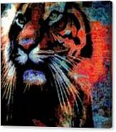 Tiger In The Mist Canvas Print