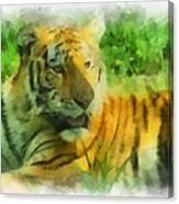 Tiger Resting Photo Art 01 Canvas Print