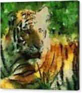 Tiger Resting Photo Art 03 Canvas Print