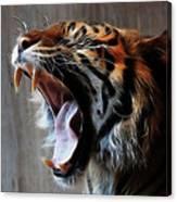 Tiger Roar Canvas Print