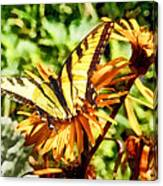 Tiger Swallowtail On Yellow Wildflower Canvas Print