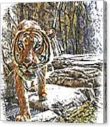 Tiger View Canvas Print