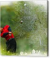Tiger Woods - The Chevron World Challenge Canvas Print