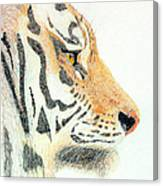 Tiger's Head Canvas Print