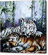 Tigers-mother And Child Canvas Print
