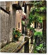 Tight Alley With Palm Trees Canvas Print