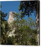 Tikal Pyramid 4a Canvas Print