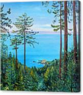 Timber Cove On A Still Summer Day Canvas Print