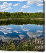 Timberland Lake Canvas Print