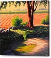Time For Planting, Peru Impression Canvas Print