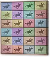 Time Lapse Motion Study Horse Color Canvas Print