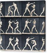 Time Lapse Motion Study Men Boxing Canvas Print